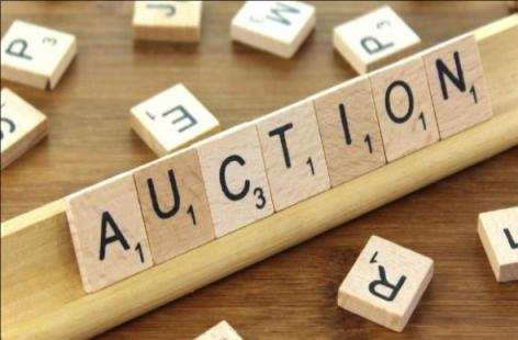 auction bidding services sydney
